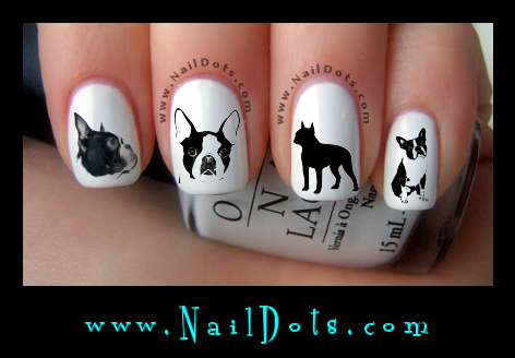 Boston Terrier Nail Decals