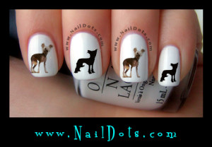 Chinese Crested Nail Decals