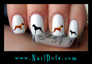 Boxer Nail Decals