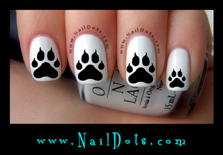 Paw Print w/Claws Nail Decal