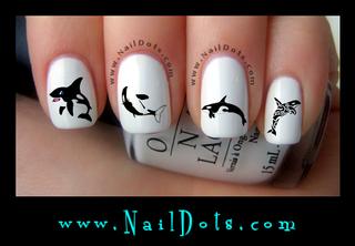 Orca Nail Decal