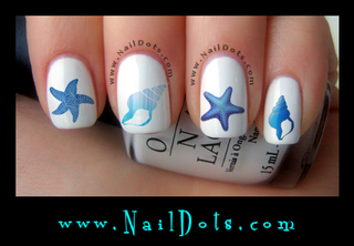 Seashell Nail Decal