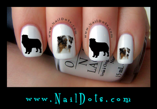 Australian Shepherd Nail Decal
