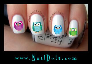 Owl CLEARANCE
