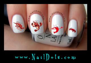 Shrimp Nail Decals