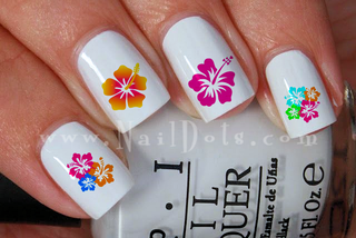 Hibiscus Collection Nail Decal